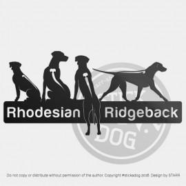 Rhodesian Ridgeback Group