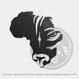 Rhodesian Ridgeback - Eyes of Africa