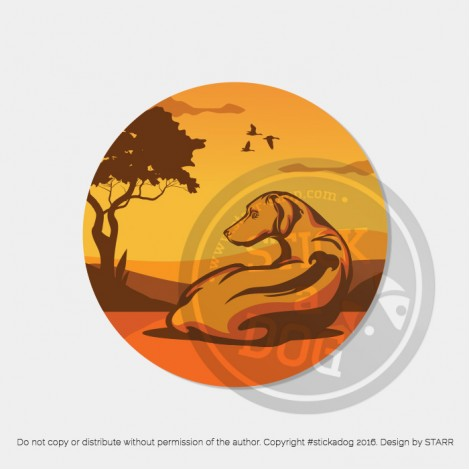 Rhodesian Ridgeback Sunset Cana